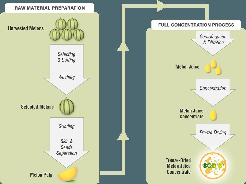 green process