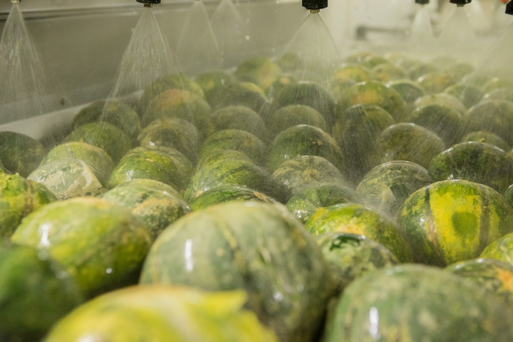 melon washing