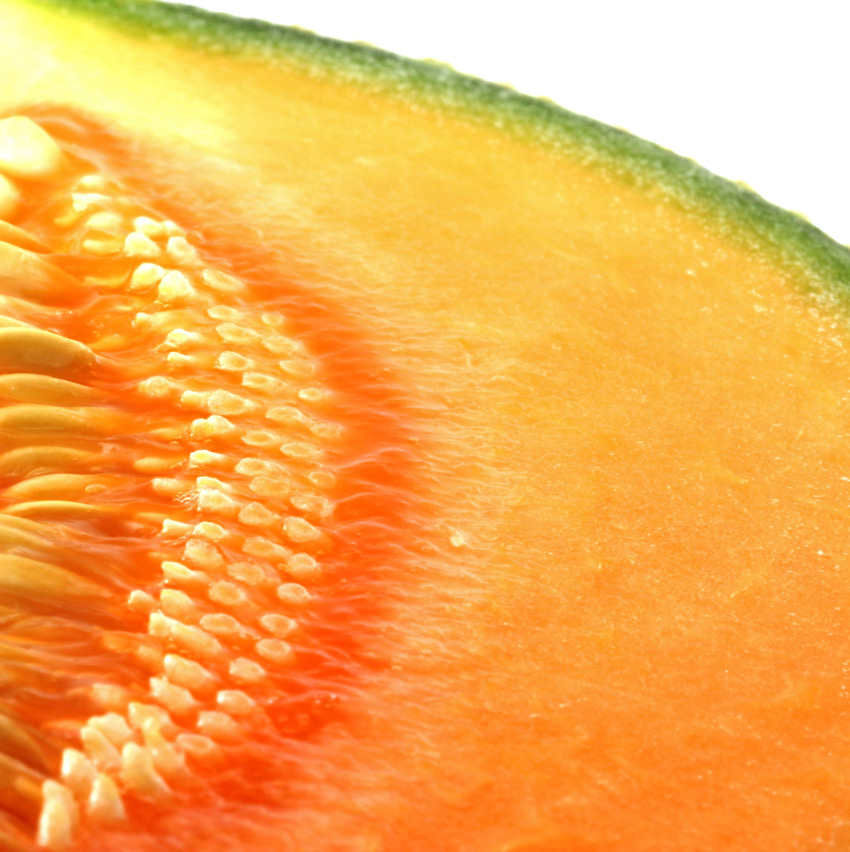Unique & proprietary melon variety
