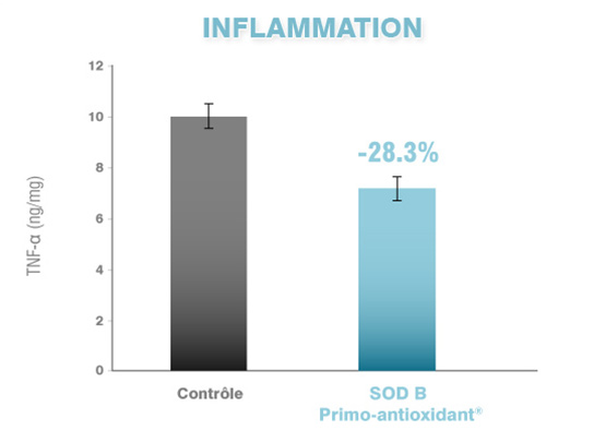 Primo-antioxidant Inflammation